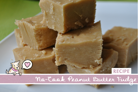 no-cook peanut butter fudge Archives - Mac + Molly