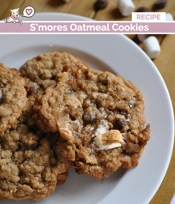 smores oatmeal cookie recipe